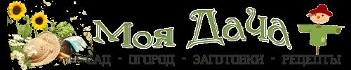Логотип сайта Дачный год