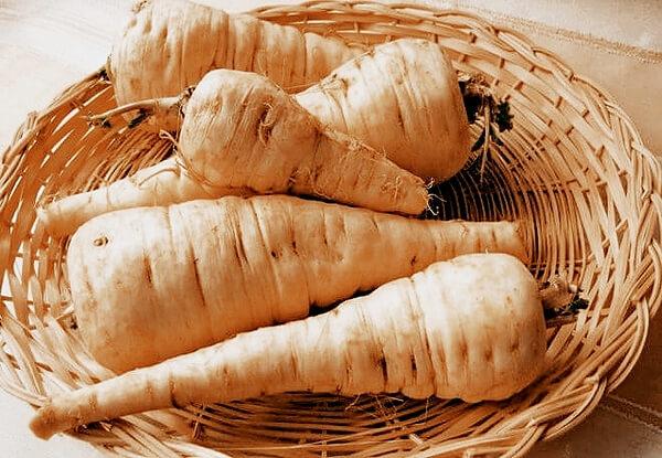 Пастернак: полезные свойства, как выращивать, применение в кулинарии